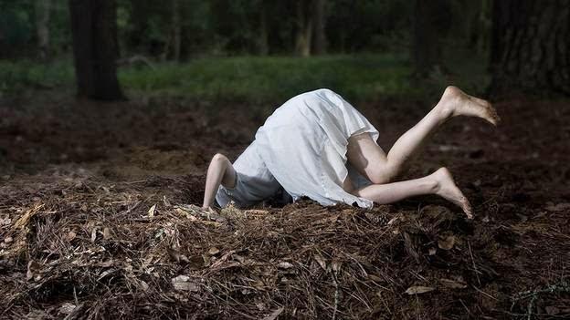 5 Coisas Que Alice No País Das Maravilhas Nos Revela Sobre O