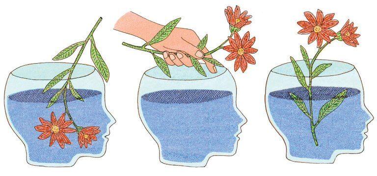 racional - racional inteligente - A diferença entre ser racional e ser inteligente
